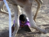 credit-jl-winters-anti-slavery-international-child-camel-jockeys-in-uae-2010-2